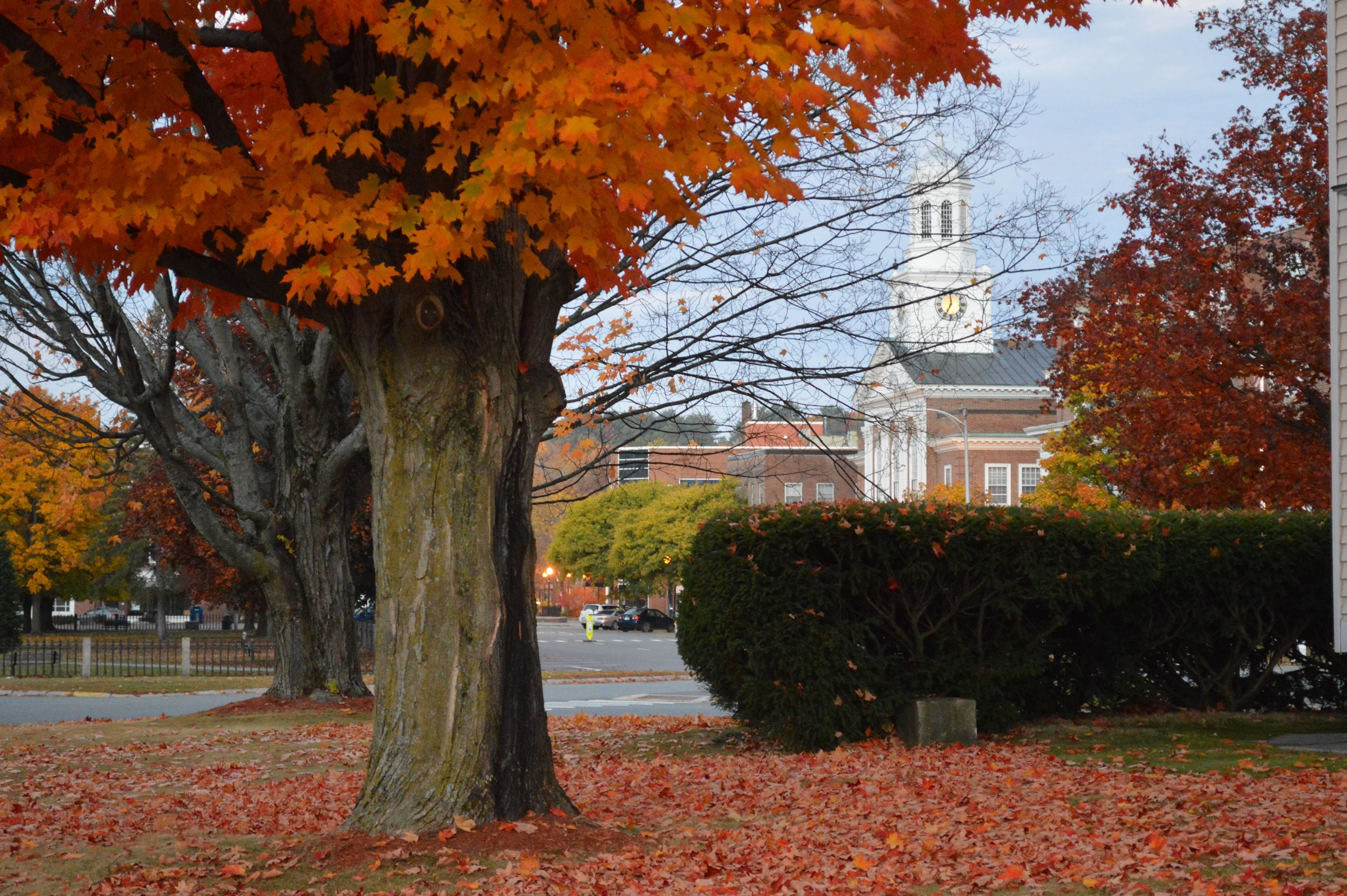 Lebanon Fall photo. City Hall from Bank street. Photo submitted by Deborah Baker.